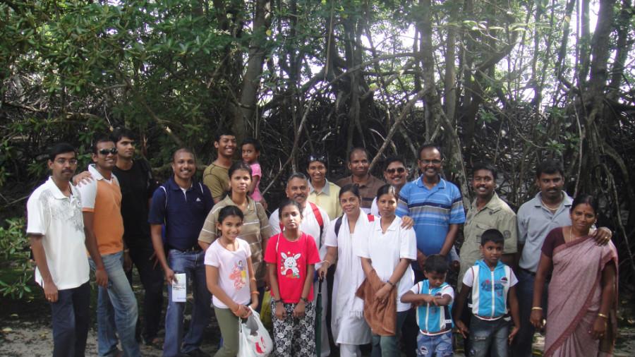 5  Mangrove at Pulau Ubin